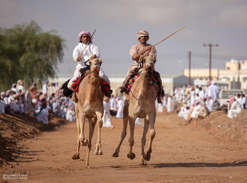 Camel Race  (62).jpg