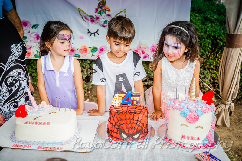 Avishag, Moria &Aaron's 4th birthday party