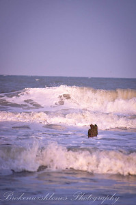 The Beaches of Wilmington NC