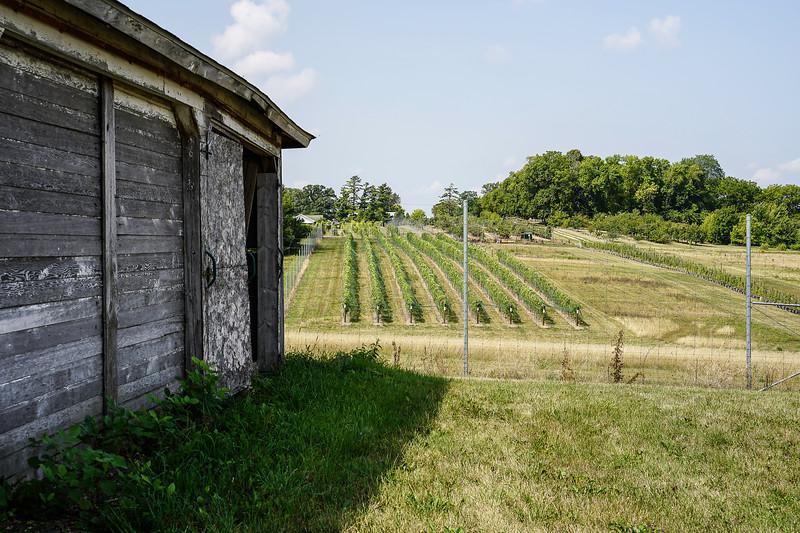 Arboretum Farm 8-19-55.JPG