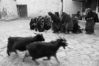 Lo Manthang, Mustang, Nepal