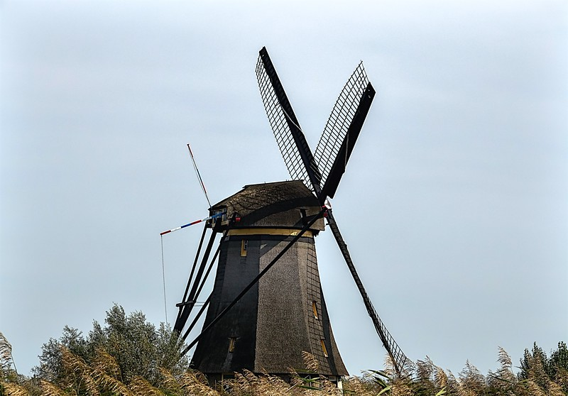 2017 kinderdijk best  wmill note colored poles in stop position -.jpg