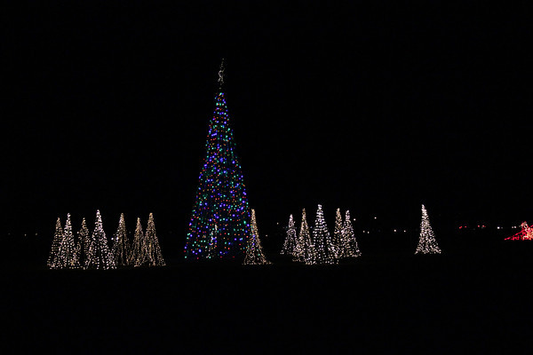 Holiday Nights 'N Lights 2013