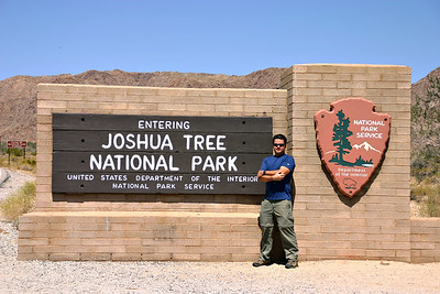Joshua Tree April 2006