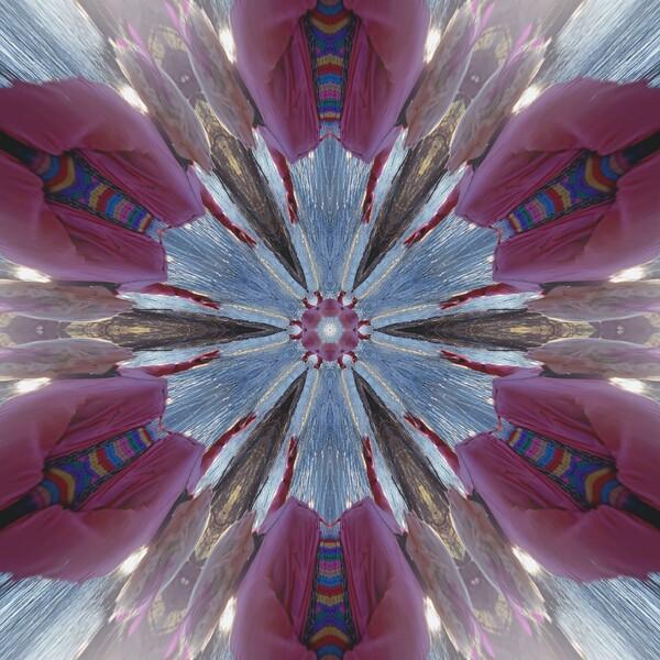 9614_mirror26.jpg