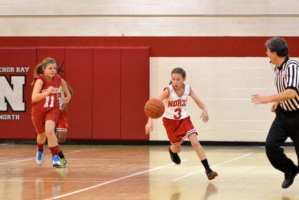 2014 ABMSN Girls Basketball - 7th Grade