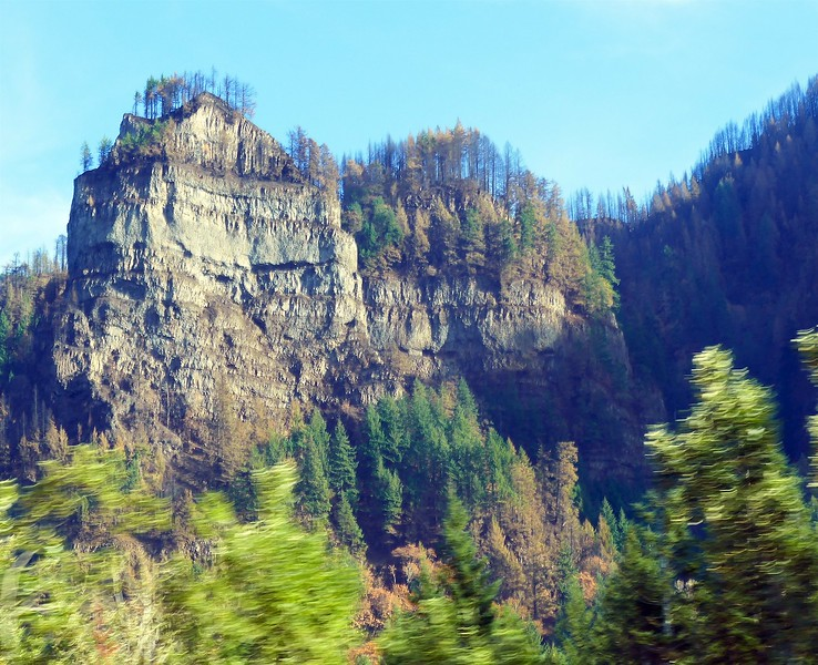 Eagle Creek Fire Damage  249.jpg