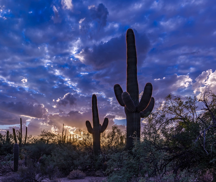 Sabino Sunset 10-30-2017d.jpg