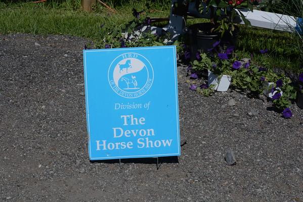 Pegasus at HRD Devon Spring 2015
