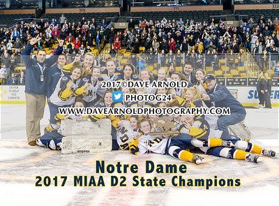 3/19/2017 - Girls Varsity Hockey - MIAA D2 State Final - Canton vs Notre Dame