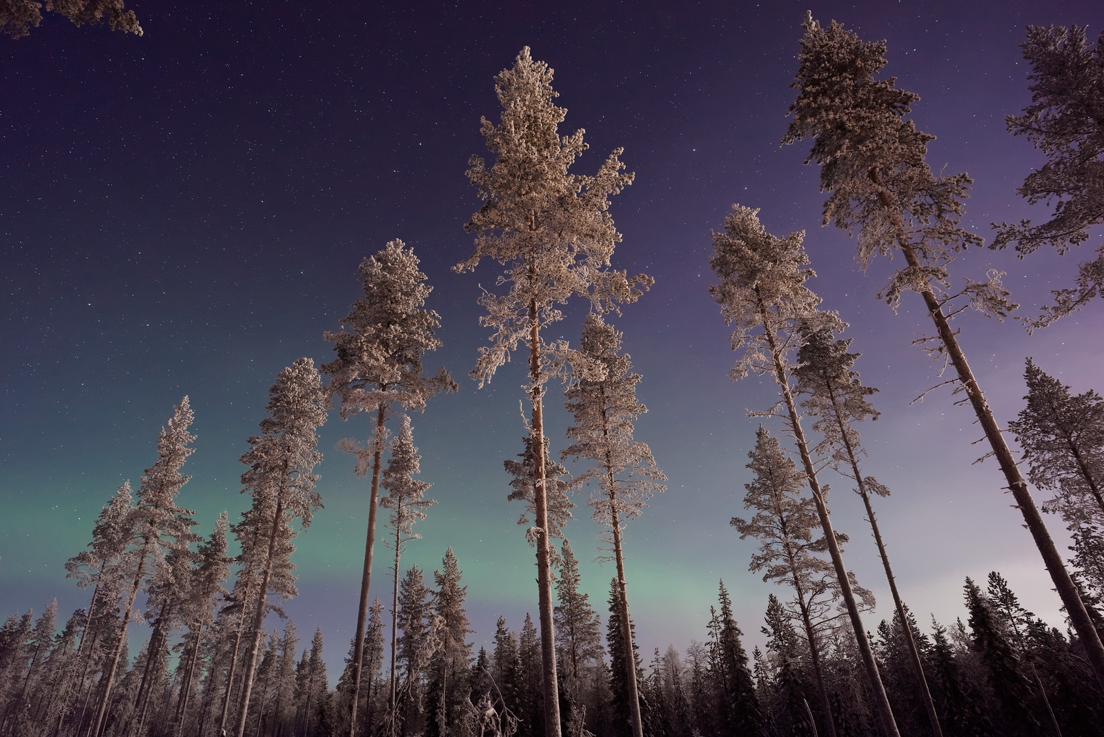 The 10 Best Places to See the Northern Lights - Finland