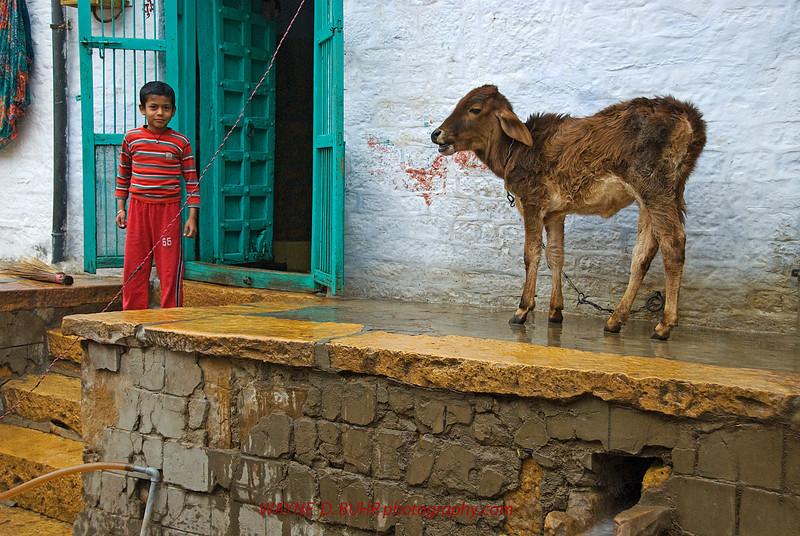 INDIA2010-0208A-368A.jpg
