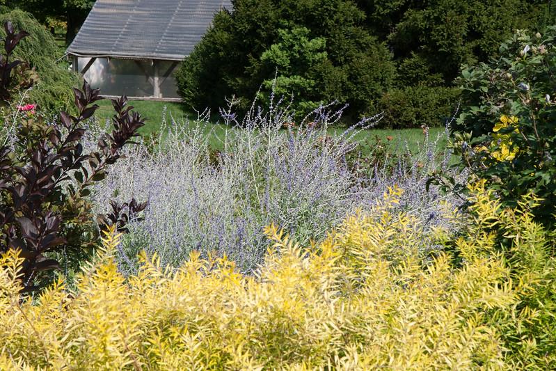 2009 09 06_White Flower Farm_0130.jpg