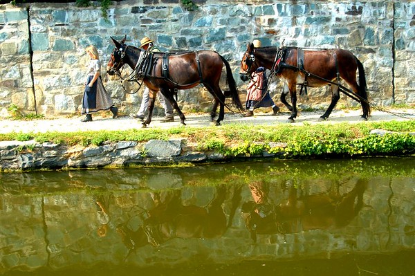Cheasapeak &  Ohio Canal