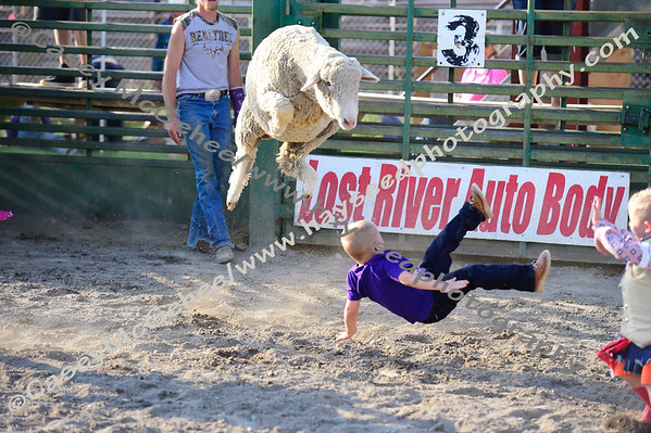 Arco Rodeo - July 15