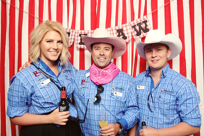 Western Energy Services Corp. Stampede 2017