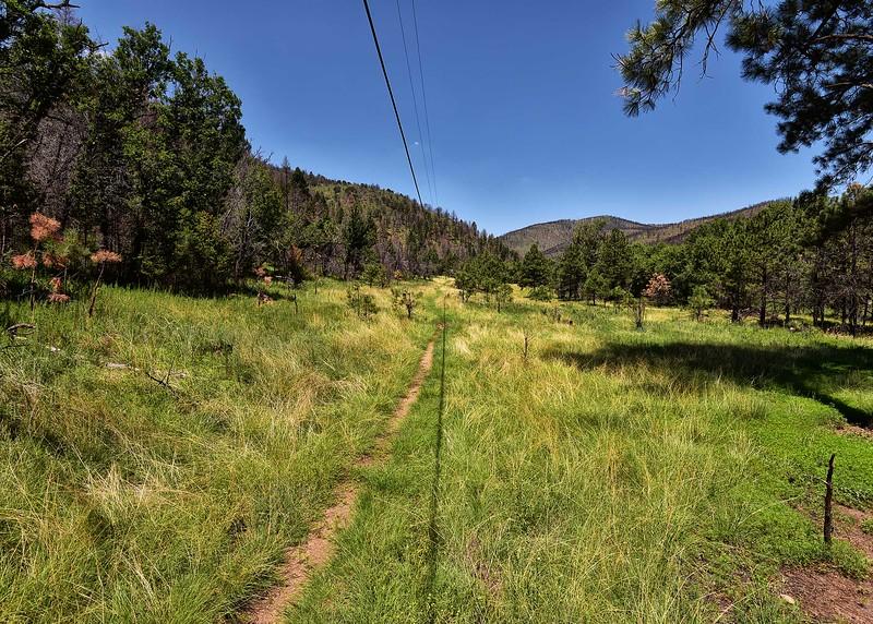 NEA_0310-7x5-Wills Canyon Trail.jpg