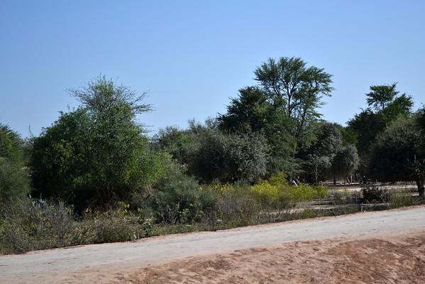 Visita al Chaco 2013