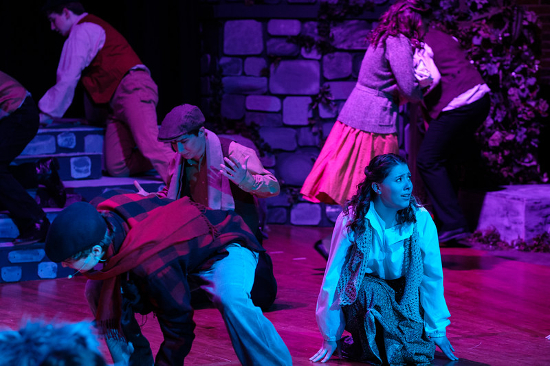 2018-03 Into the Woods Performance 0874.jpg