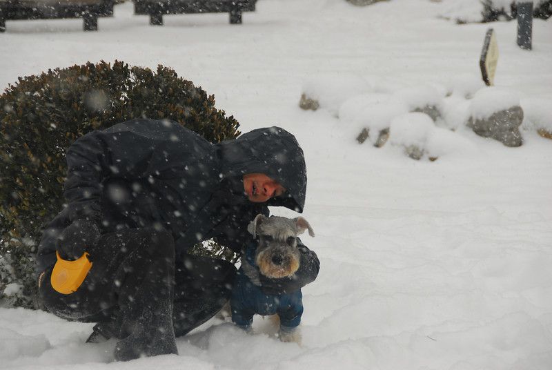 [20100103] 1st 2010 Snow in Beijing (57).JPG
