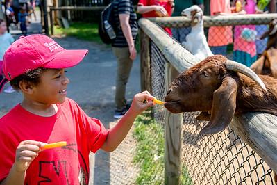 Thru Declan's Eyes: Reston Zoo