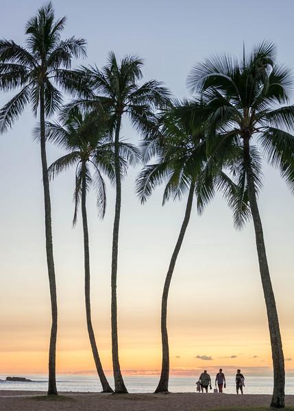 hawaii014.jpg