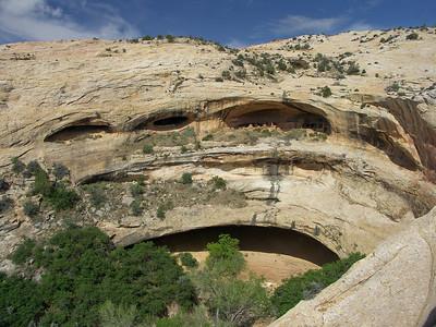 Cedar Mesa