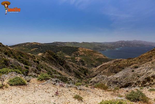 อเมริกา | Santa Cruz Island - CINP (1)