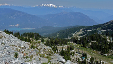 Whistler Mountain - August 2010
