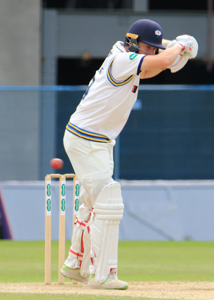 Yorkshire v Somerset Sept 2018-61.jpg