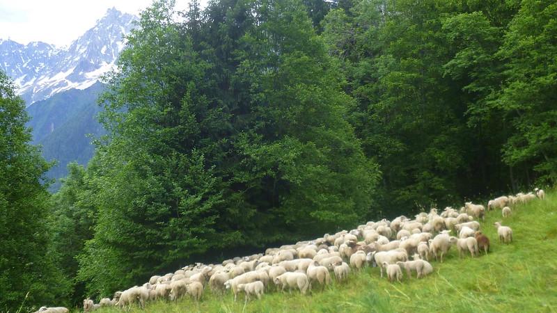 Les Houches to Modane