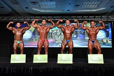 Men's Bodybuilding Open Overall