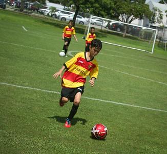 West Pines United U-10 2013-14