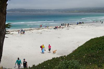 Carmel Retriever Day 2013 - Beach Play