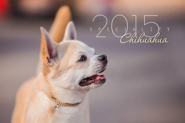 Chihuahua National Show, 20.09.15