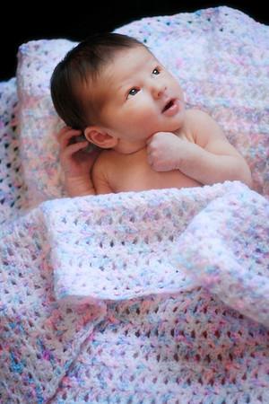 Jones Newborn Portraits