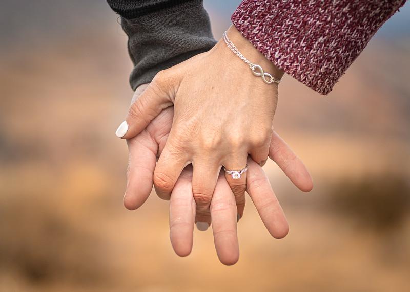 12.14.19 Amanda and Shawn Engagement-3961.jpg