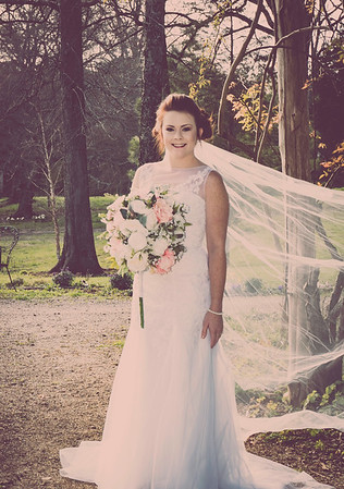 Introducing Mrs. Allison Newton