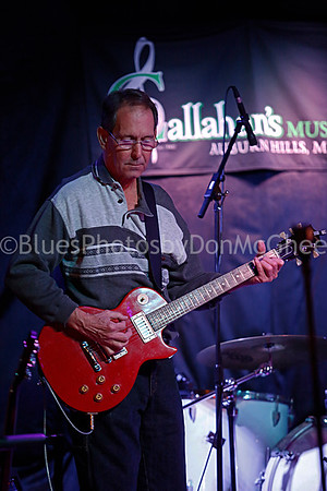 Detroit Blues Society Band Challenge Finals 2017