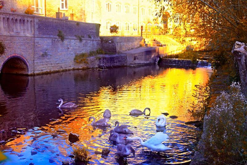 The River Avon, Malmesbury,Wiltshire