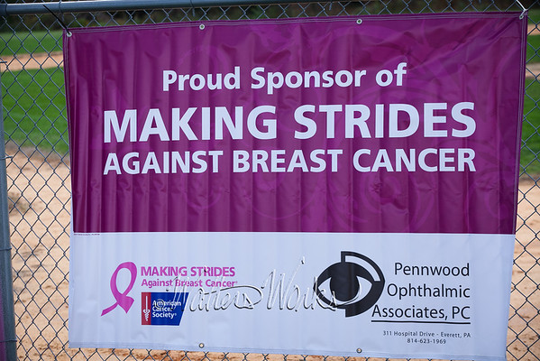 Making Strides 2014