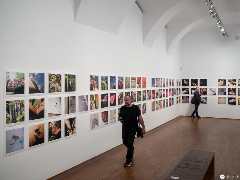 Ausstellung Manfred Willmann in der Albertina