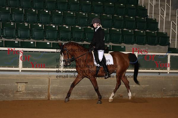 313 PB Sport Horse Show Hack