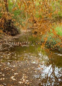 Banita Creek099