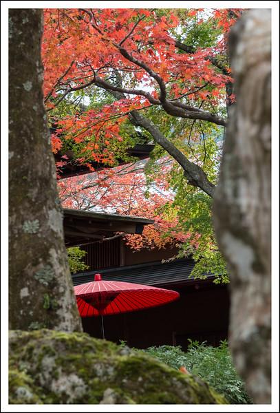 Hakone Museum-0654.jpg