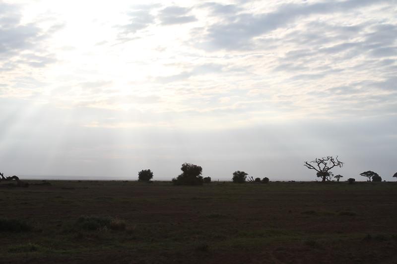 Kenya 2019 #2 257.JPG