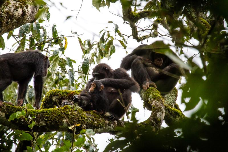Uganda_GNorton_03-2013-677.jpg