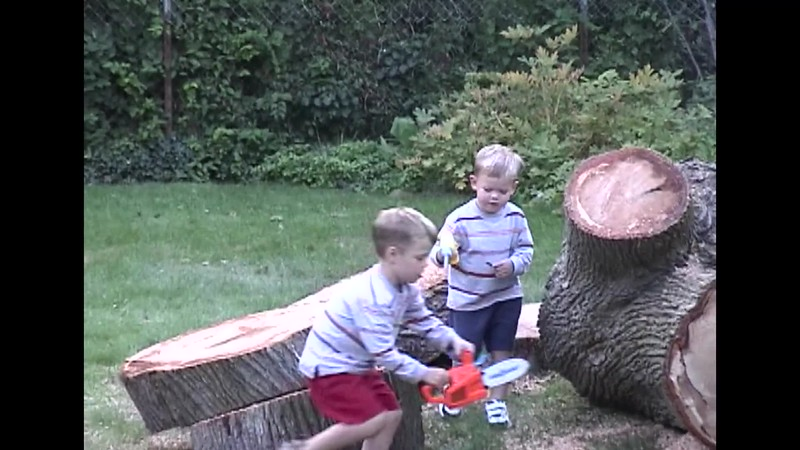 Cutting Up the Maple.mp4