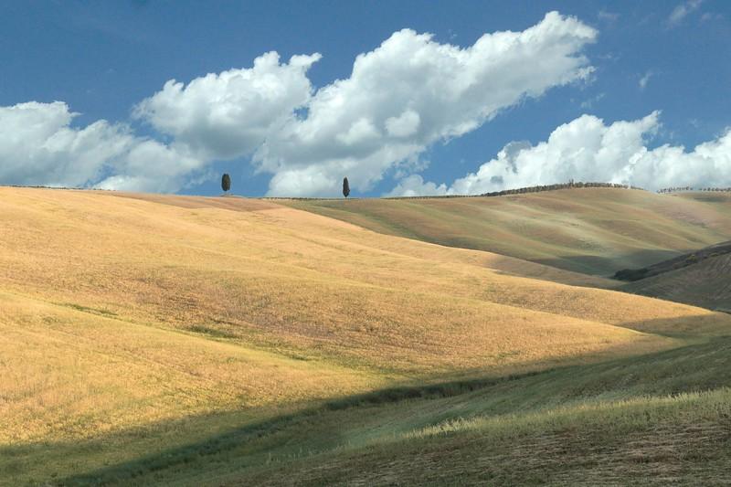 Tuscan Fields-.jpg