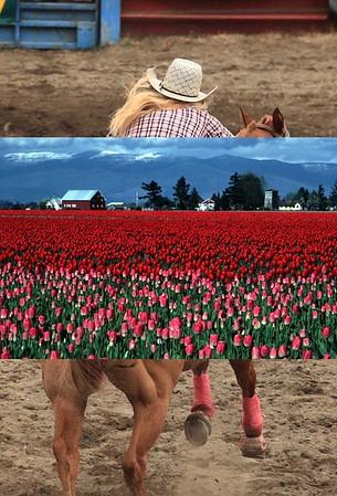Cowgirl 3512c.jpg